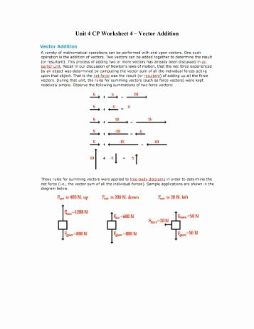 Vector Addition Worksheet with Answers Elegant W2 02 Single Step Vector Worksheet â Key