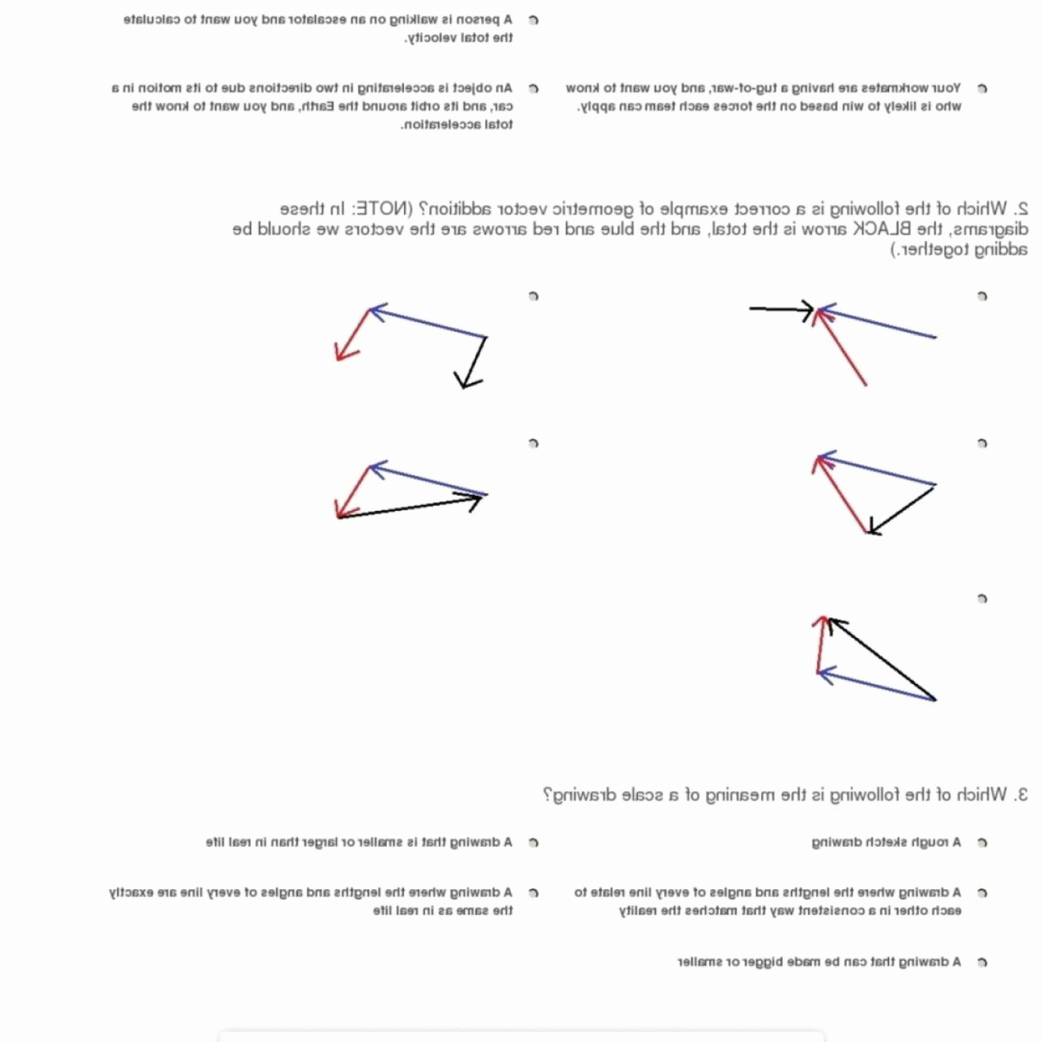 Vector Worksheet Physics Answers Best Of Adding Vectors In Physics Worksheets