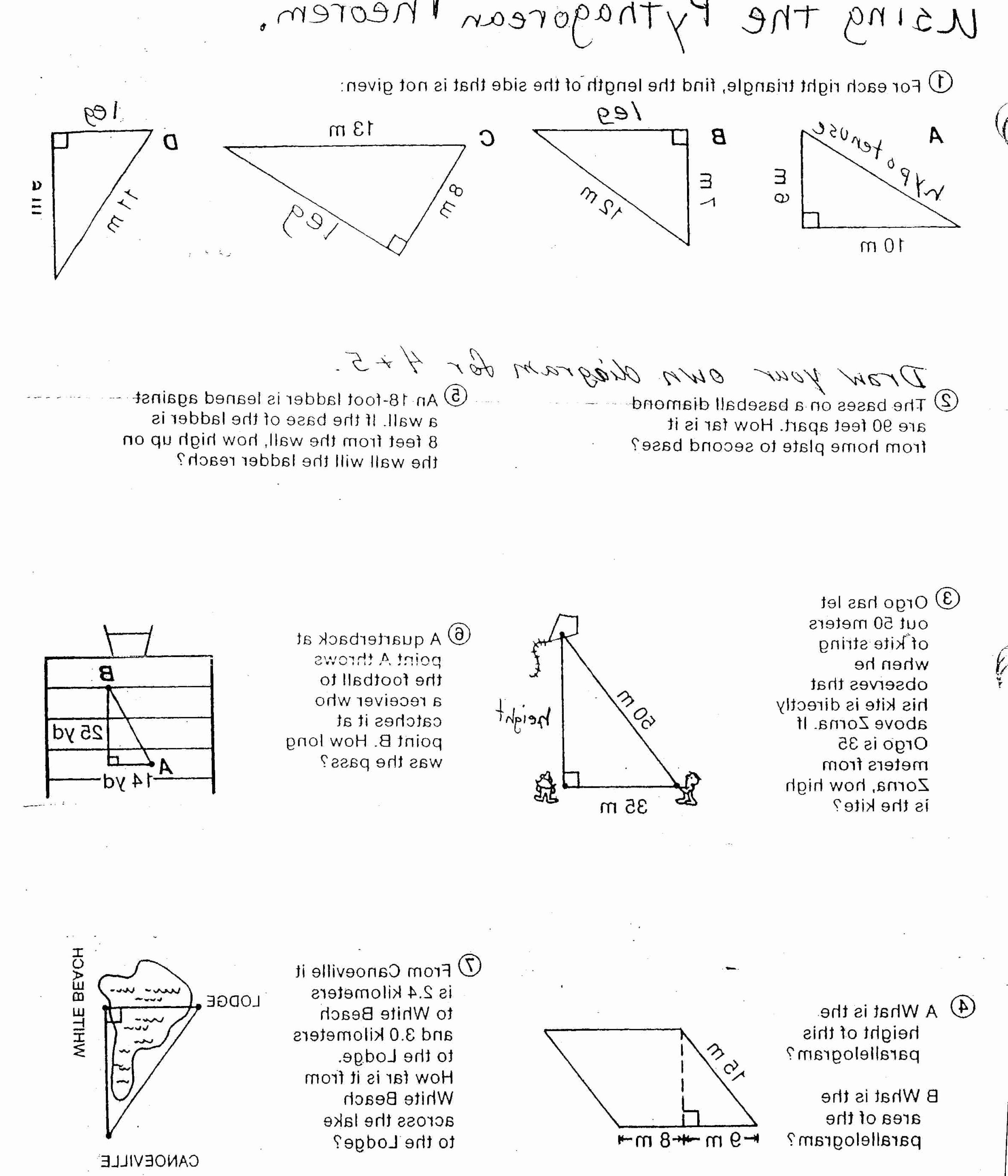 Vector Worksheet Physics Answers Elegant Vector Worksheet Physics Answers