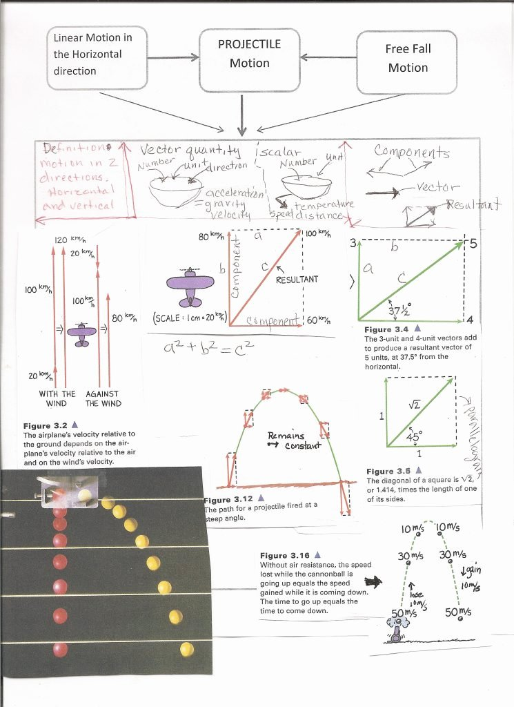 Vector Worksheet Physics Answers Inspirational Vector Worksheet Physics Math Worksheets Mr Alexander