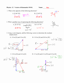 Vector Worksheet Physics Answers Inspirational Vectors Worksheet 2 Adding Vectors Graphical Method