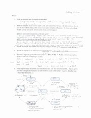 Virus and Bacteria Worksheet Answers Awesome Chapter 18 Viruses and Bacteria Worksheet Answers