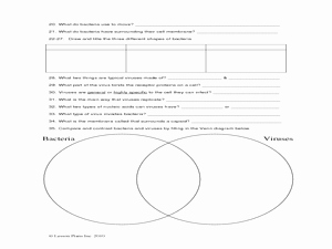 Virus and Bacteria Worksheet Answers Awesome Introductory Bacteria and Virus Worksheet 9th 12th Grade