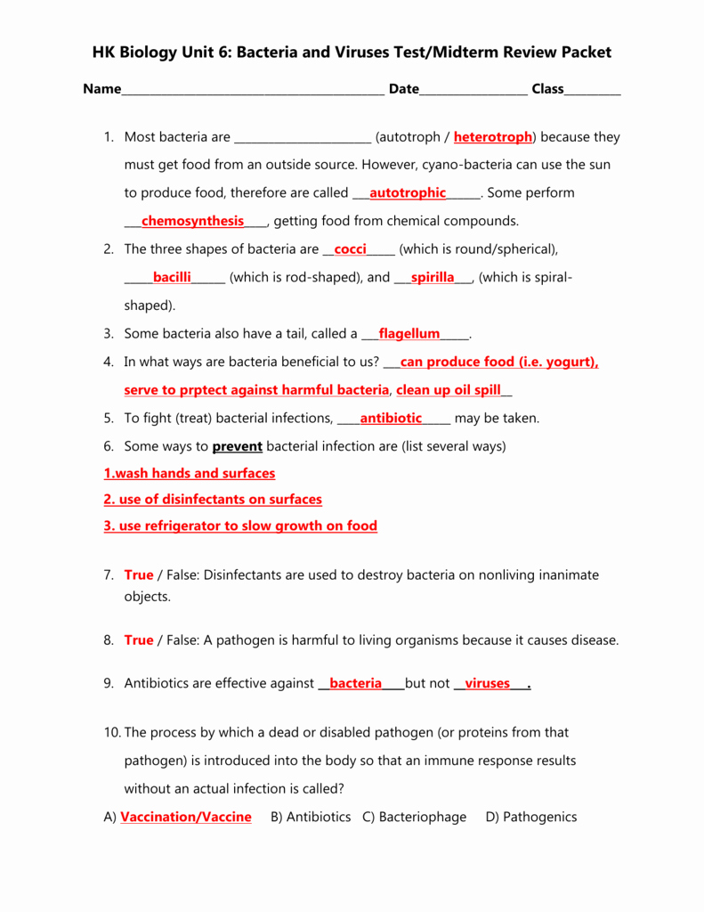 Virus and Bacteria Worksheet Answers Inspirational Worksheet Virus and Bacteria Worksheet Grass Fedjp