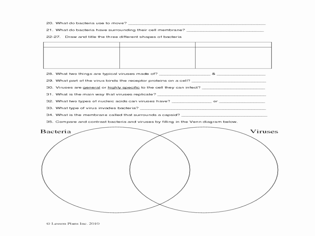 Virus and Bacteria Worksheet Elegant Introductory Bacteria and Virus Worksheet Worksheet for