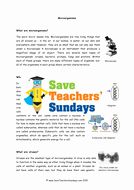 Virus and Bacteria Worksheet New Bacteria and Viruses Ks2 Lesson Plan Information Text and