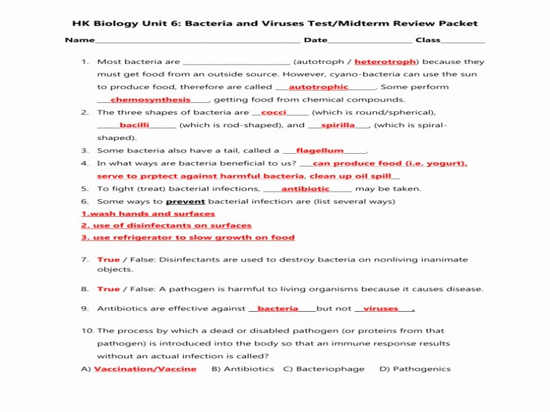 Virus and Bacteria Worksheet Unique Unit 6 Bacteria Nd Viruses Review Sheet Honors Answer Key