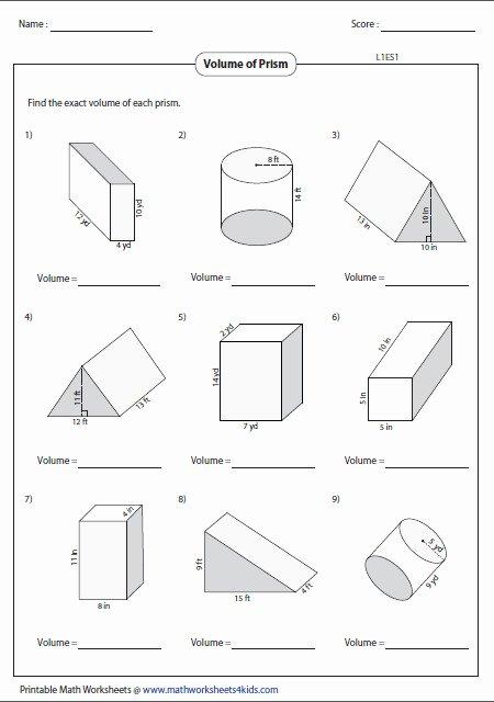 Volume Of Cylinders Worksheet Elegant Volume Cylinder Worksheet