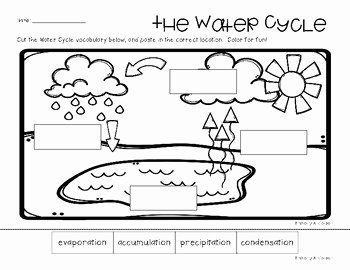 Water Cycle Worksheet Answer Key Beautiful Water Cycle Poster Classroom Display and Practice