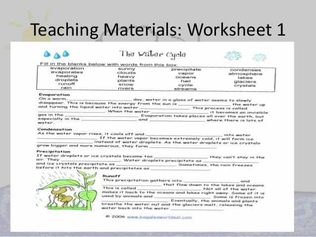 Water Cycle Worksheet Answer Key Elegant Raynor Jacqueline Water Cycle