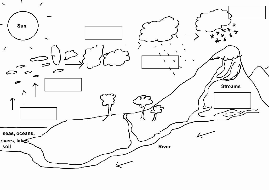 Water Cycle Worksheet Answer Key Fresh Water Cycle Worksheet Answer Key the Best Worksheets Image