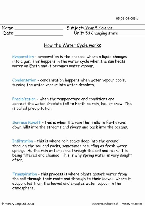 Water Cycle Worksheet Answer Key Lovely Primaryleap How the Water Cycle Works Worksheet