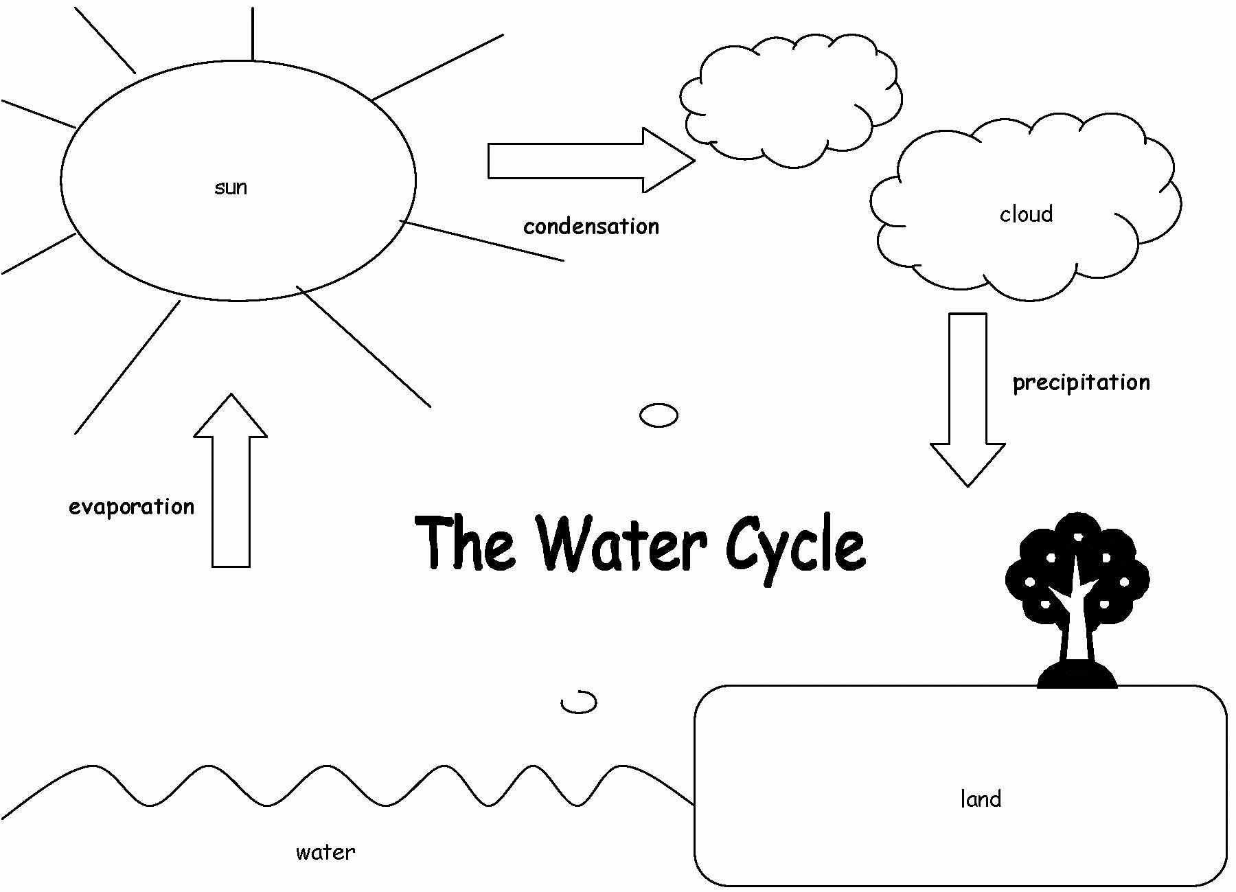 Water Cycle Worksheet Answer Key Luxury Year2watercycle