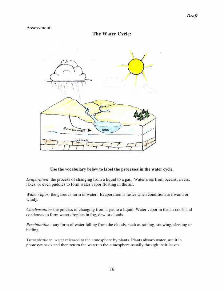 Water Cycle Worksheet Answer Key New Water Cycle Worksheet Answer Key the Best Worksheets Image