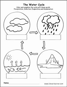 Water Cycle Worksheet Middle School Awesome 7 Mejores Imágenes De Water Cycle Worksheets