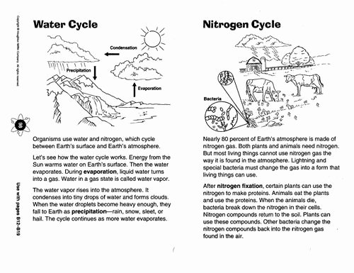 Water Cycle Worksheet Middle School Elegant Zola D Science Chapter 8 Diagram Of the Water Cycle