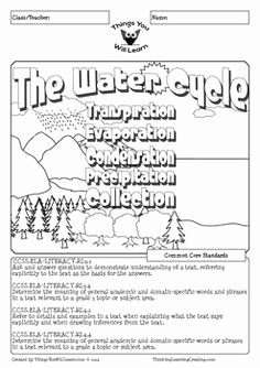 Water Cycle Worksheet Middle School Fresh the Water Cycle Crossword Puzzle Worksheet
