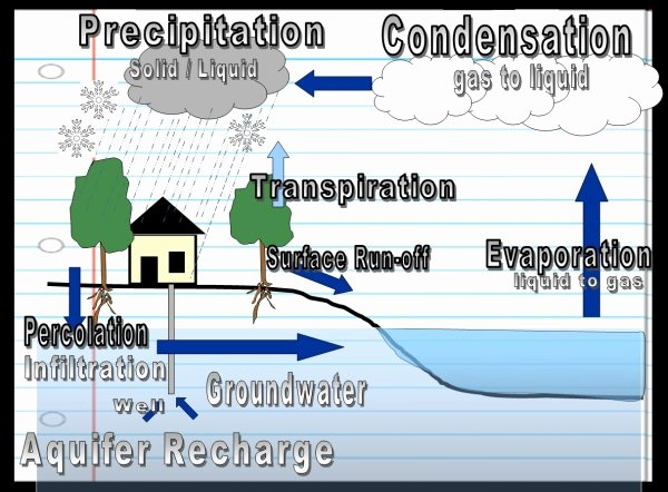 Water Cycle Worksheet Middle School Fresh Water Cyle