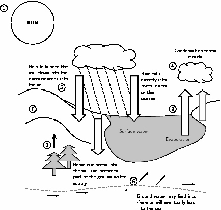Water Cycle Worksheet Middle School Inspirational 17 Best Of Nitrogen Cycle Worksheet Middle School