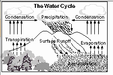 Water Cycle Worksheet Middle School Inspirational 6th Grade the Water Cycle Ms Sylvester S Science Page