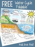 Water Cycle Worksheet Middle School Lovely Free Science Worksheet Water Cycle
