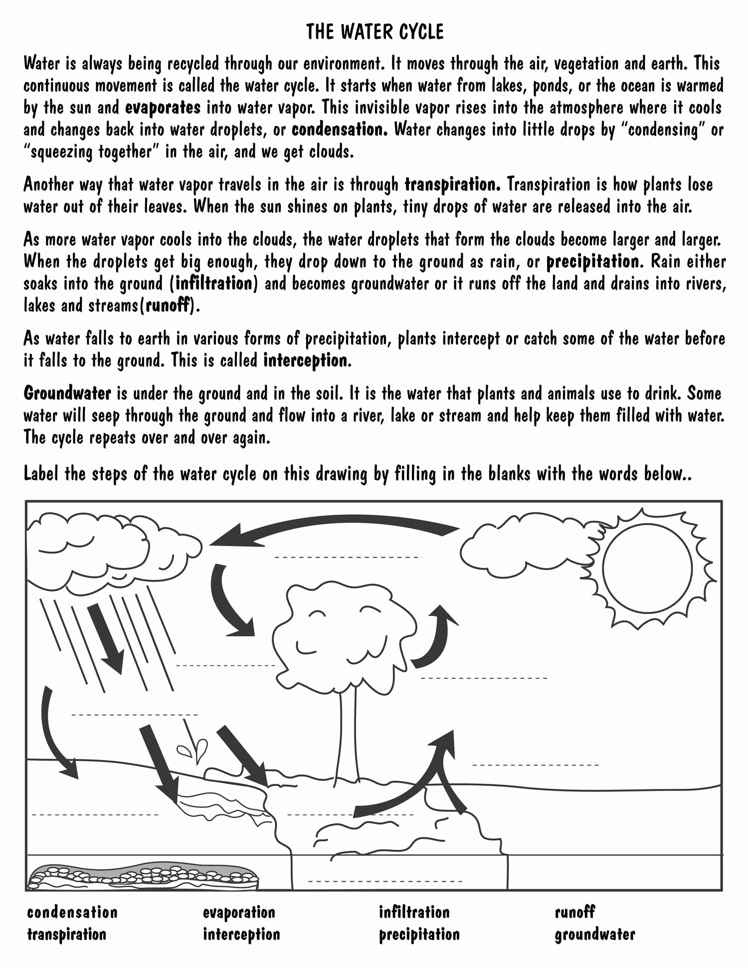 Water Cycle Worksheet Middle School Lovely Printable Water Cycle Diagram