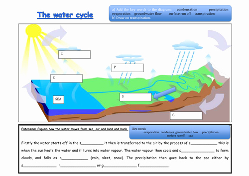Water Cycle Worksheet Middle School Luxury What is the Water Cycle by 88collinsl