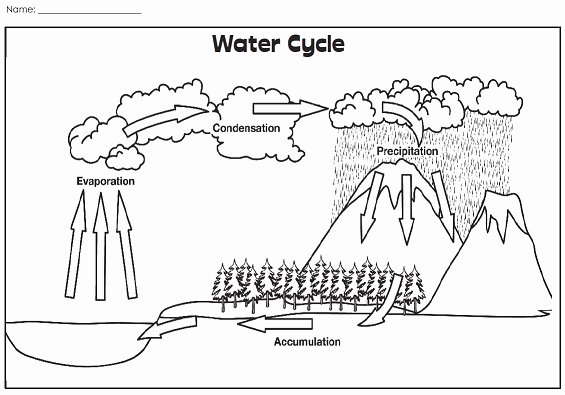 Water Cycle Worksheet Middle School Unique A Water Cycle Illustration