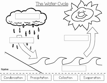 Water Cycle Worksheet Pdf Awesome the Water Cycle by Breakfast at First Grade