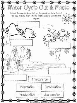 Water Cycle Worksheet Pdf Awesome Water Cycle Freebie School