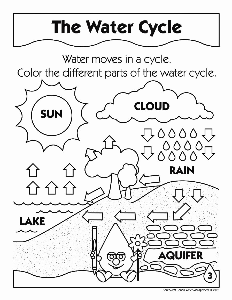 Water Cycle Worksheet Pdf Best Of Printable Water Cycle Coloring Pages Enjoy Coloring