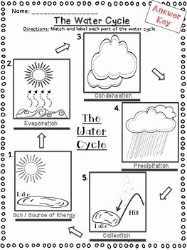 Water Cycle Worksheet Pdf Best Of Water Cycle Activities Cut and Paste and Fill In