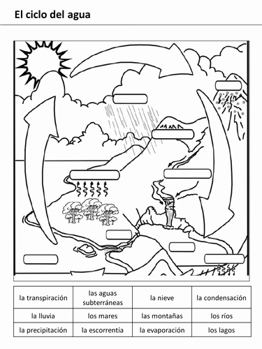 Water Cycle Worksheet Pdf Inspirational Water Cycle Lesson 1 by Rhawkes Teaching Resources Tes