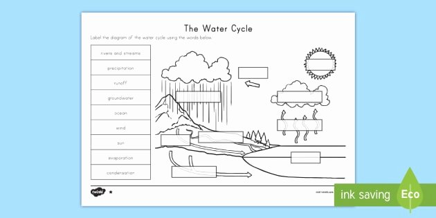 Water Cycle Worksheet Pdf Lovely the Water Cycle Differentiated Worksheet Activity Sheets