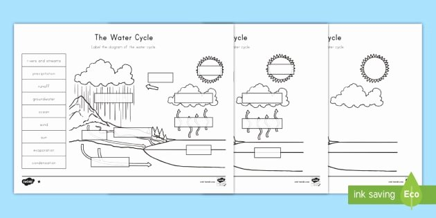 Water Cycle Worksheet Pdf Lovely the Water Cycle Differentiated Worksheet Worksheets