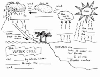 Water Cycle Worksheet Pdf Luxury the Water Cycle Foldable Free by Science Doodles
