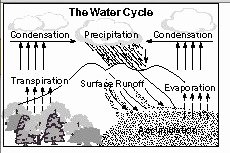 Water Cycle Worksheet Pdf New with the Help Of Neat and Labelled Diagrams Explain the