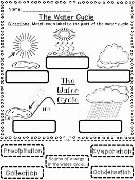 Water Cycle Worksheet Pdf Unique Water Cycle Activities Cut and Paste and Fill In