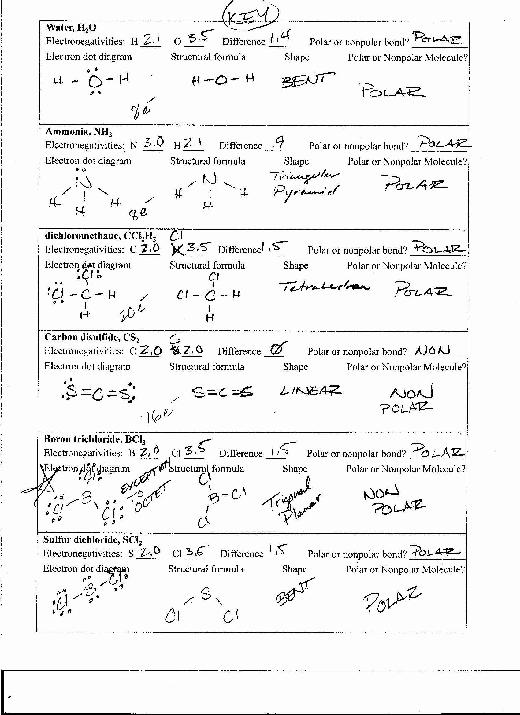 Worksheet Polarity Of Bonds Answers Elegant Ph & Poh Russian Answer Work Sheet Worksheets Tutsstar
