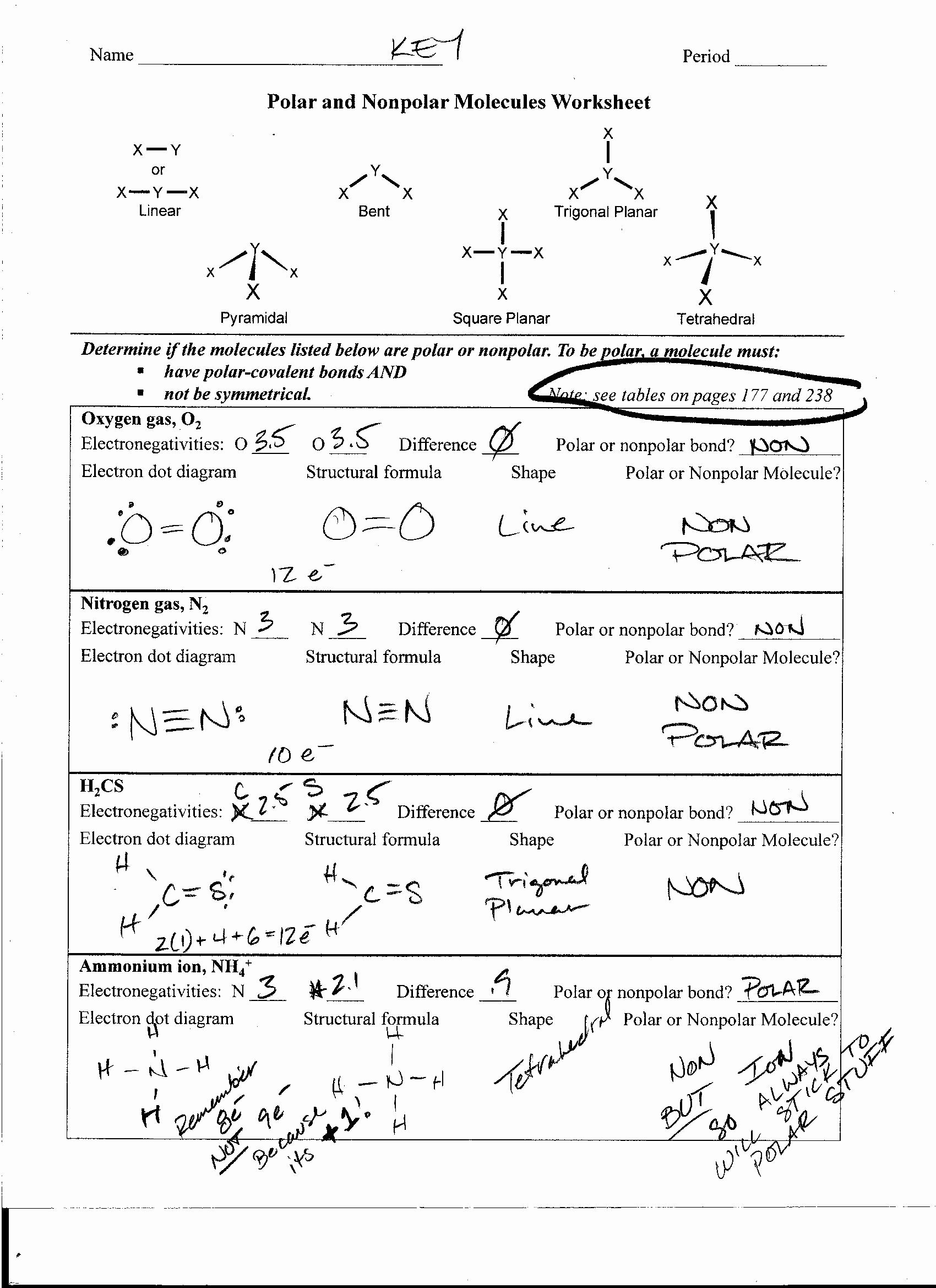 Worksheet Polarity Of Bonds Answers Elegant Polar and Nonpolar Molecules Worksheet