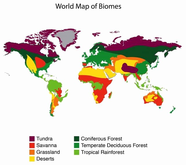 World Biome Map Coloring Worksheet Beautiful Biomes