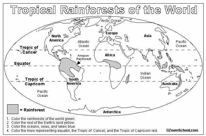 World Biome Map Coloring Worksheet Lovely Best 25 Rainforest Map Ideas On Pinterest