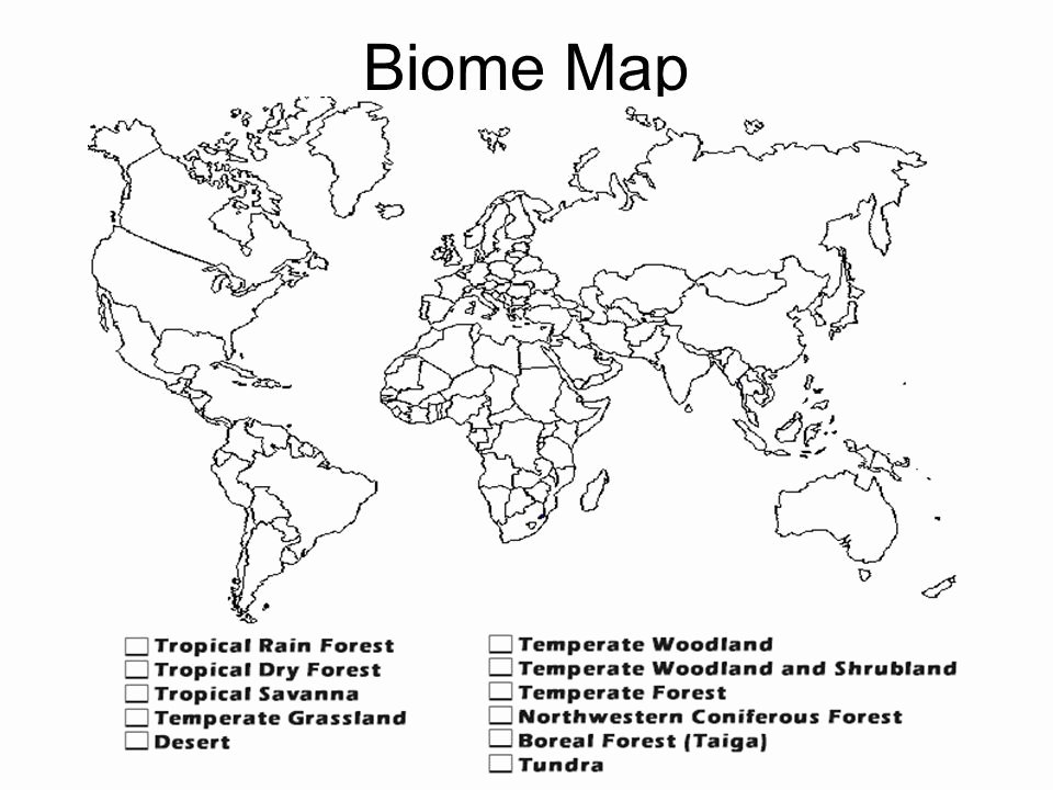 World Biome Map Coloring Worksheet Luxury 3 Biome Drawing Shrubland for Free On Ayoqq Cliparts