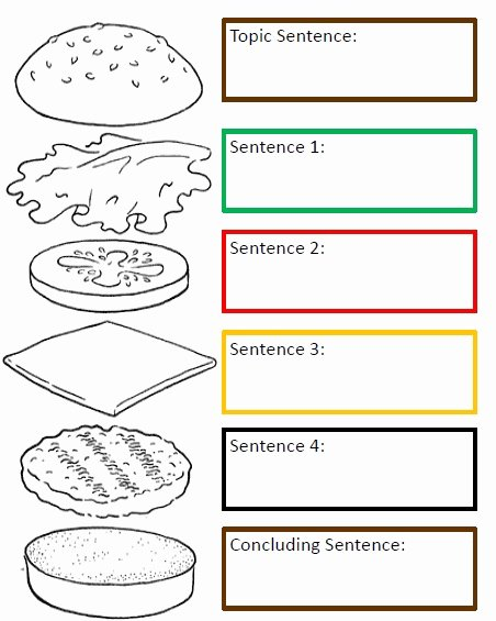 Writing A topic Sentence Worksheet Unique Hamburger Paragraph Homestead A Bud
