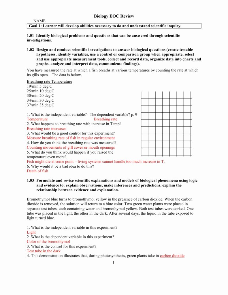 Written Document Analysis Worksheet Answers Best Of Motion Graph Analysis Worksheet Scriptclub